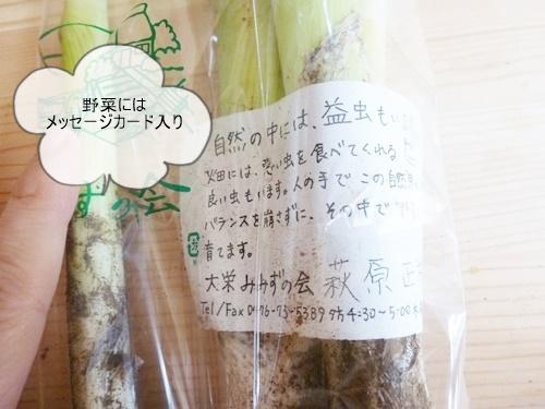 millet-otameshi011